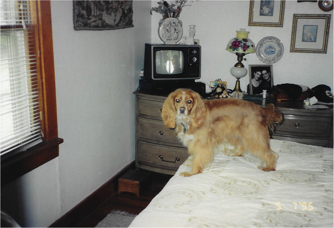 London in our bedrrom in 1995 in East Peoria